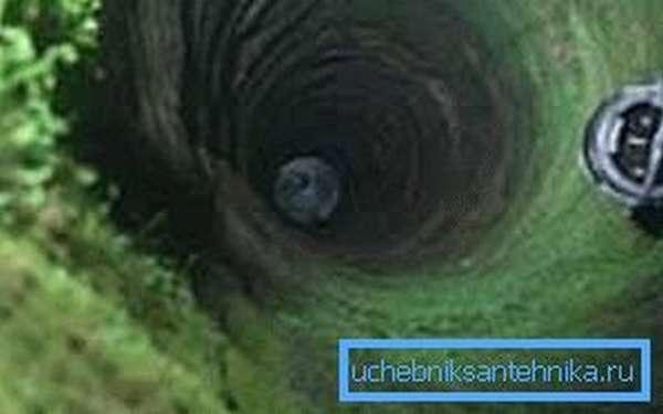 Что делать если в колодце мутная вода, а по бокам сплошная зелень травы – обязательно всё очищать