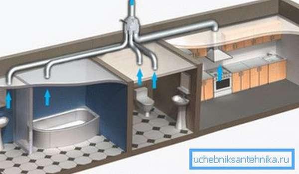 Графическое изображение размещения вентиляции со стояком на уровне туалета