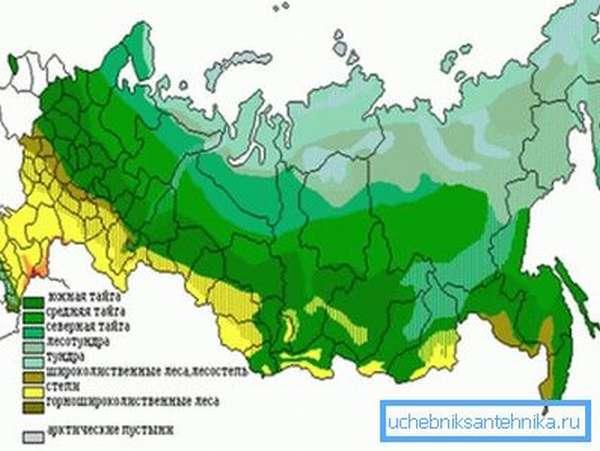 Климатические зоны РФ.