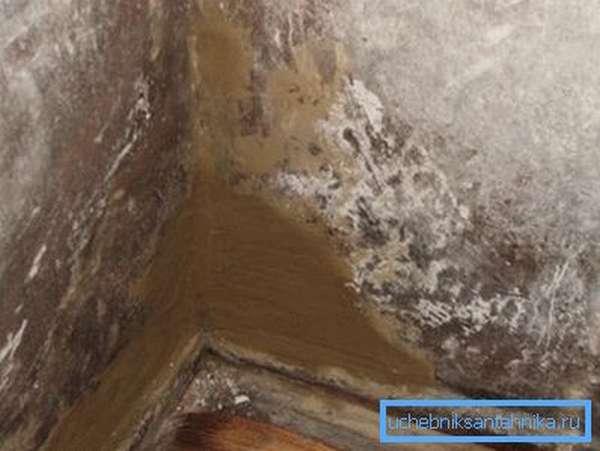 На фото плесень на стенах вследствие недостаточного воздухообмена