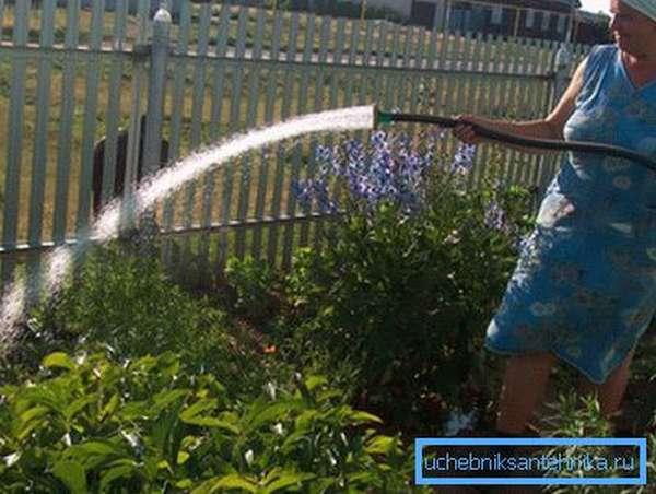 Обильный полив приводит к перерасходу воды