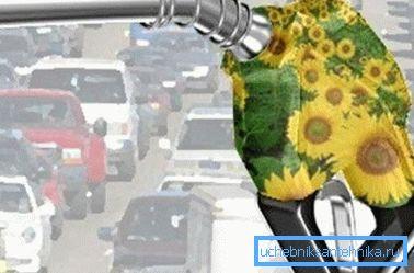 Органический бензин поможет справиться с экологическими проблемами