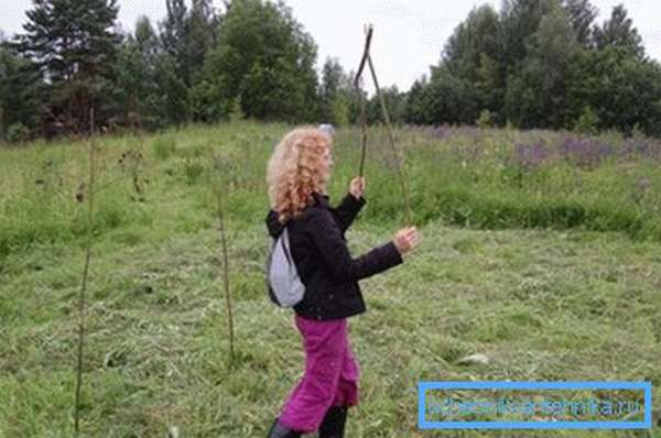 Поиск воды ивовым прутиком