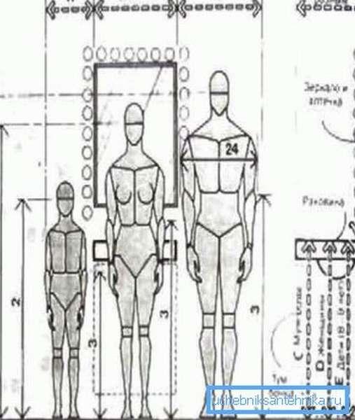 Схема антропометрических данных и расположения раковины