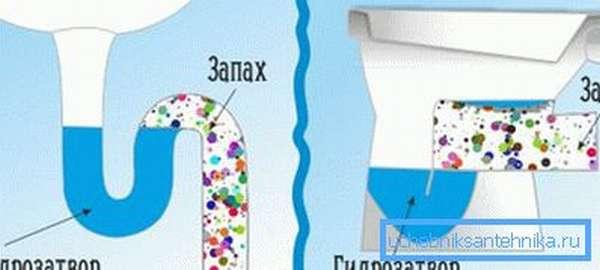 Схема работы гидрозатвора под мойкой и унитазом