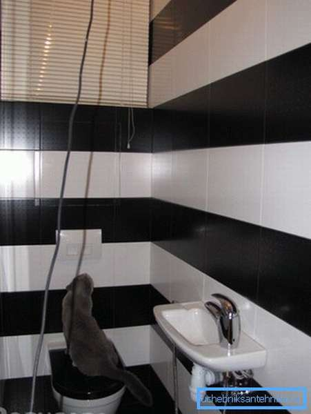Такой туалет выглядит больше, чем он есть на самом деле