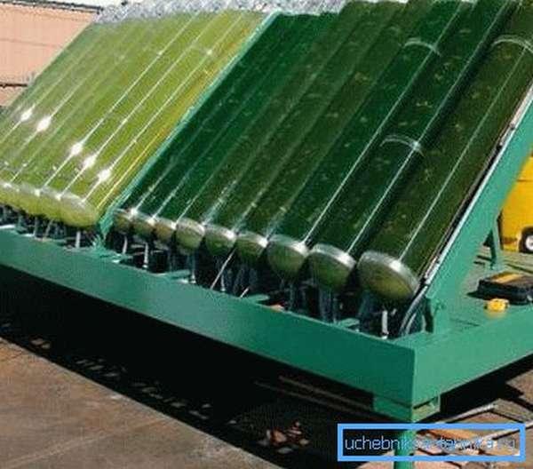 Установка для производства органического энергоносителя из водорослей