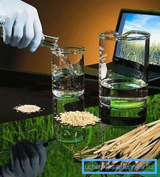 Жидкое топливо производится из рапса
